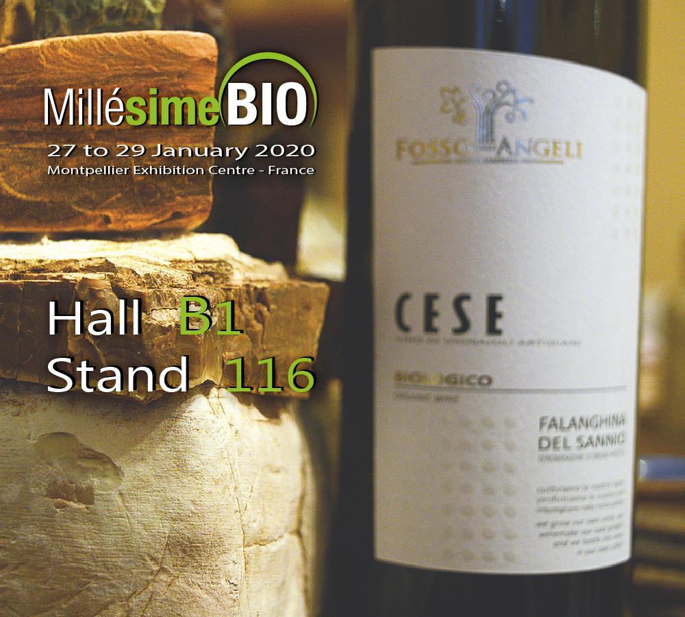 millesime-bio-hall-b1-stand-116-Fosso-degli-Angeli