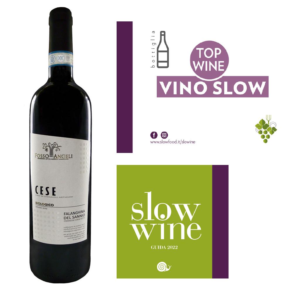 top-wine-vino-slow-Cese-Falanghina-Fossodegliangeli-2019-slow-wine-2022